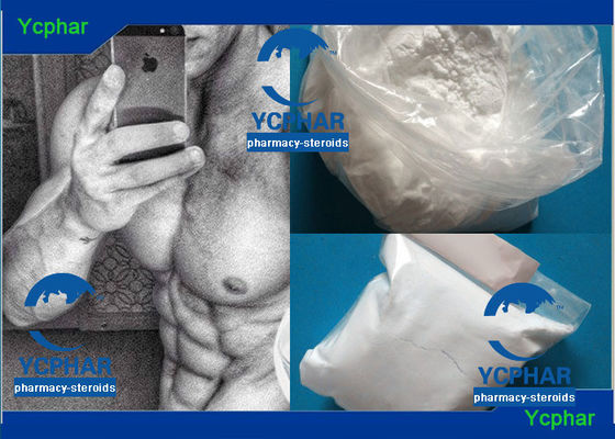 China Boldenone Base 846-48-0 Bodybuilding Anabolic Steroids Bulking Cycle supplier