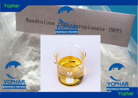 China Nandrolon Phenylpropionate Gain Muscle Lose Fat Steroids , Test Phenylpropionate Cycle supplier