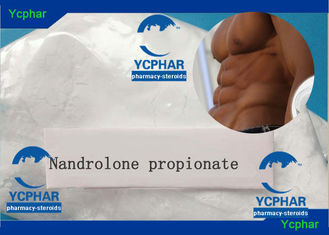 China NPP Nandrolone Phenylpropionate Pondus C21H30O3 19 Anabol Testo High Purity supplier