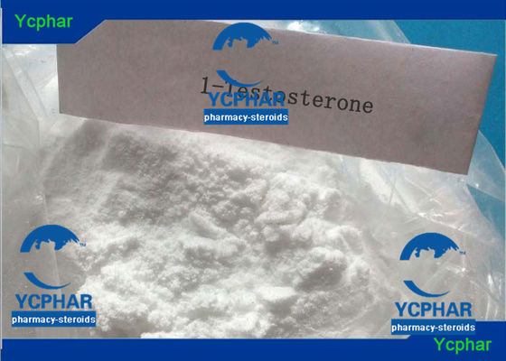 China 17a-Methyl-1-Testosterone 65-04-3 Anabolic Steroids Oral Cycle Medical supplier