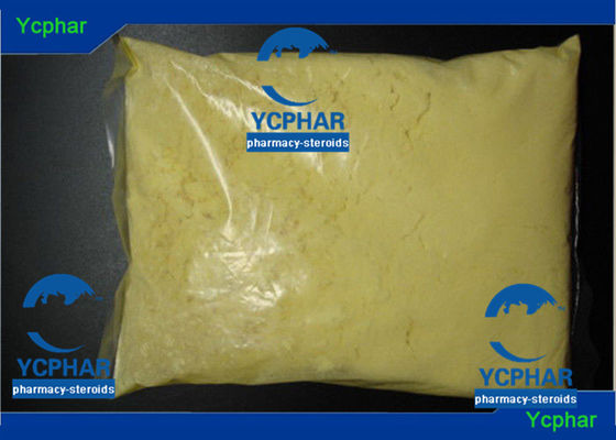 China 10161-34-9 Raw Tren Powder / Trenbolone Acetate Powder Muscle Growth supplier