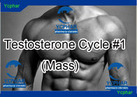 China Testosterone Anabolic Steroids Cycles 5721-91-5 , Mass Building Cycle company