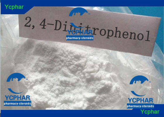China 51-28-5 Weight Loss Steroids 2 4-Dinitrophenol DNP C6H4N2O5 Slimming Aids factory