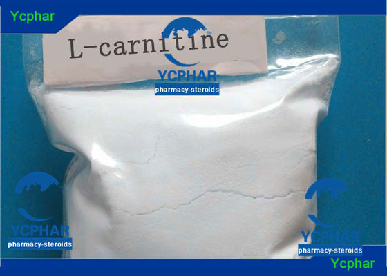China L-Carnitine CAS 541-15-1 Levocarnitine 3 Lose Weight Steroids For Cutting Weight  L-carnithine factory