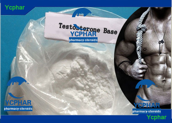 China Testbase Maths Testosterone Anabolic Steroid Injection Musle Growth Hormone CAS 58-22-0 factory