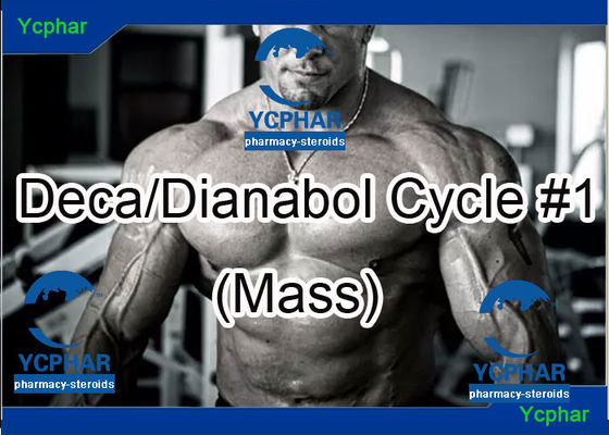 China Deca 200mg Nandrolone Decanoate Injection Pro Steroid Cycles For Mass factory