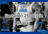 Deca Durabolin And Sustanon 250 Cycle Dosage Mass Building Stack Steroids